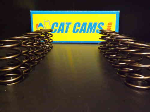 Cat Cams Single Springs